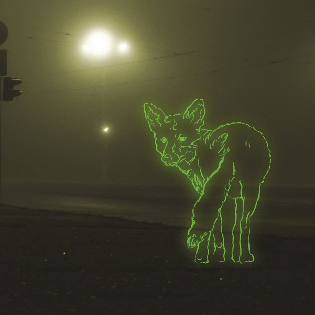 A dark, foggy street with a fox drawn in neon green, looking back over it's shoulder towards the camera, in the foreground.