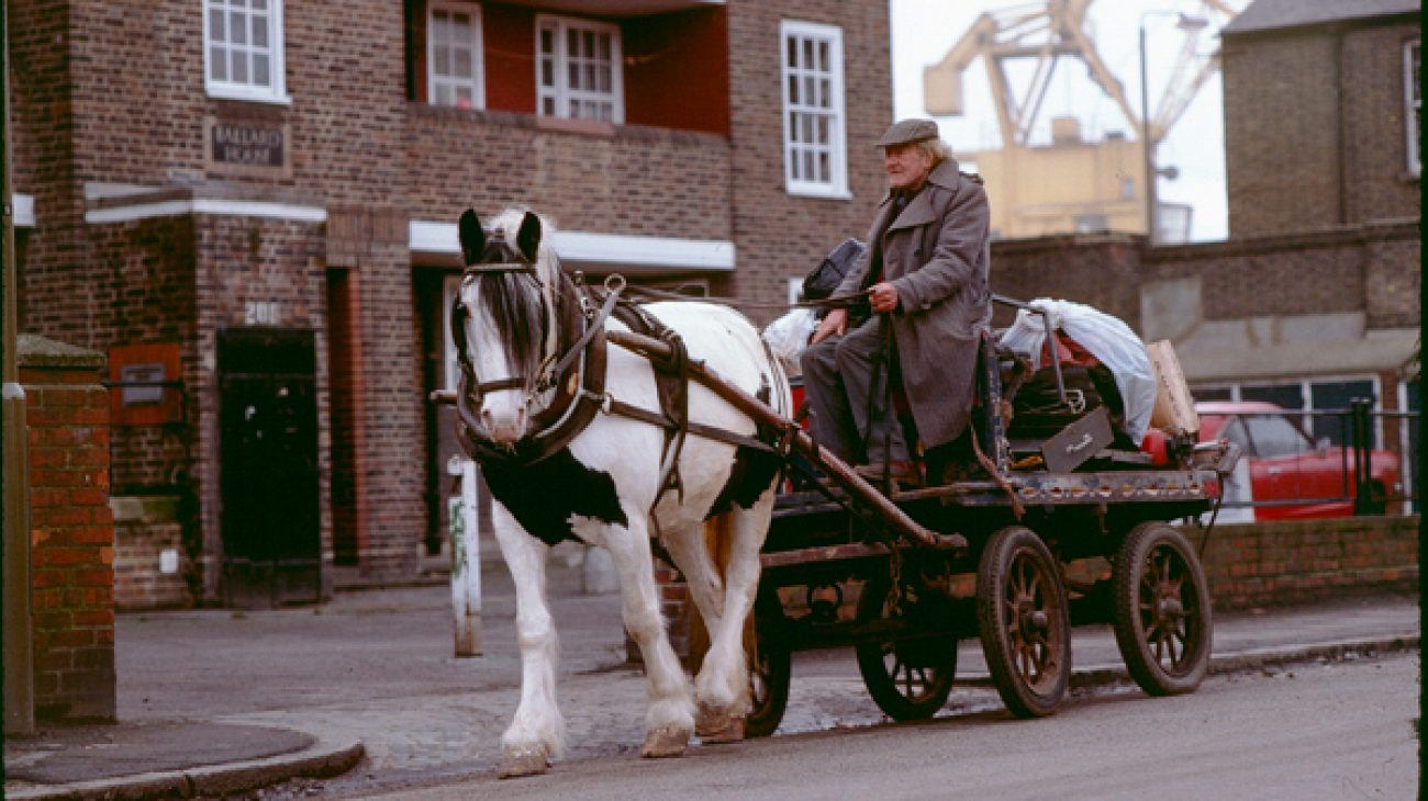 Old man totting with pie bald horse and loaded cart outside Ballard House, Norway Street.