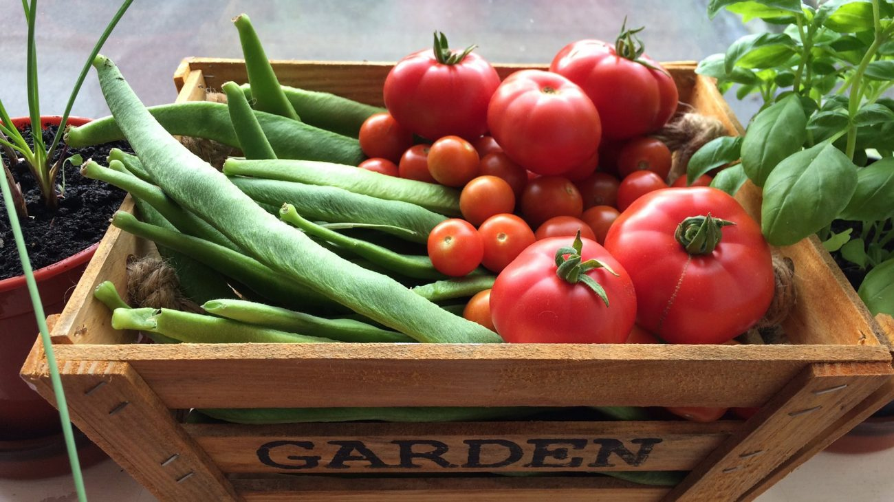 Produce from the Albany garden on sale in Caff A.