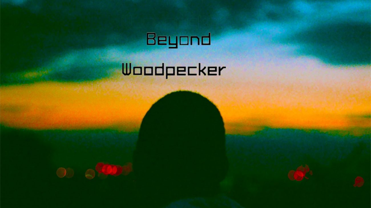 Beyond Woodpecker